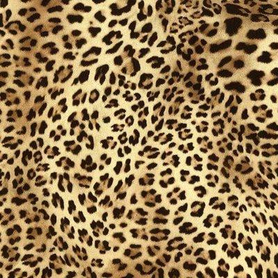 Politape Leopard (30x50cm)