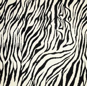 Politape Zebra (30x48)